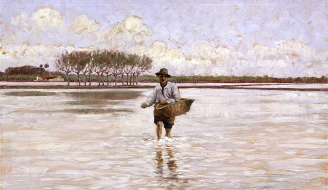 il seminatore di riso