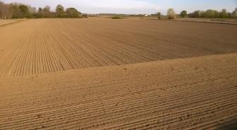 semina-terra-lavoro-risaia