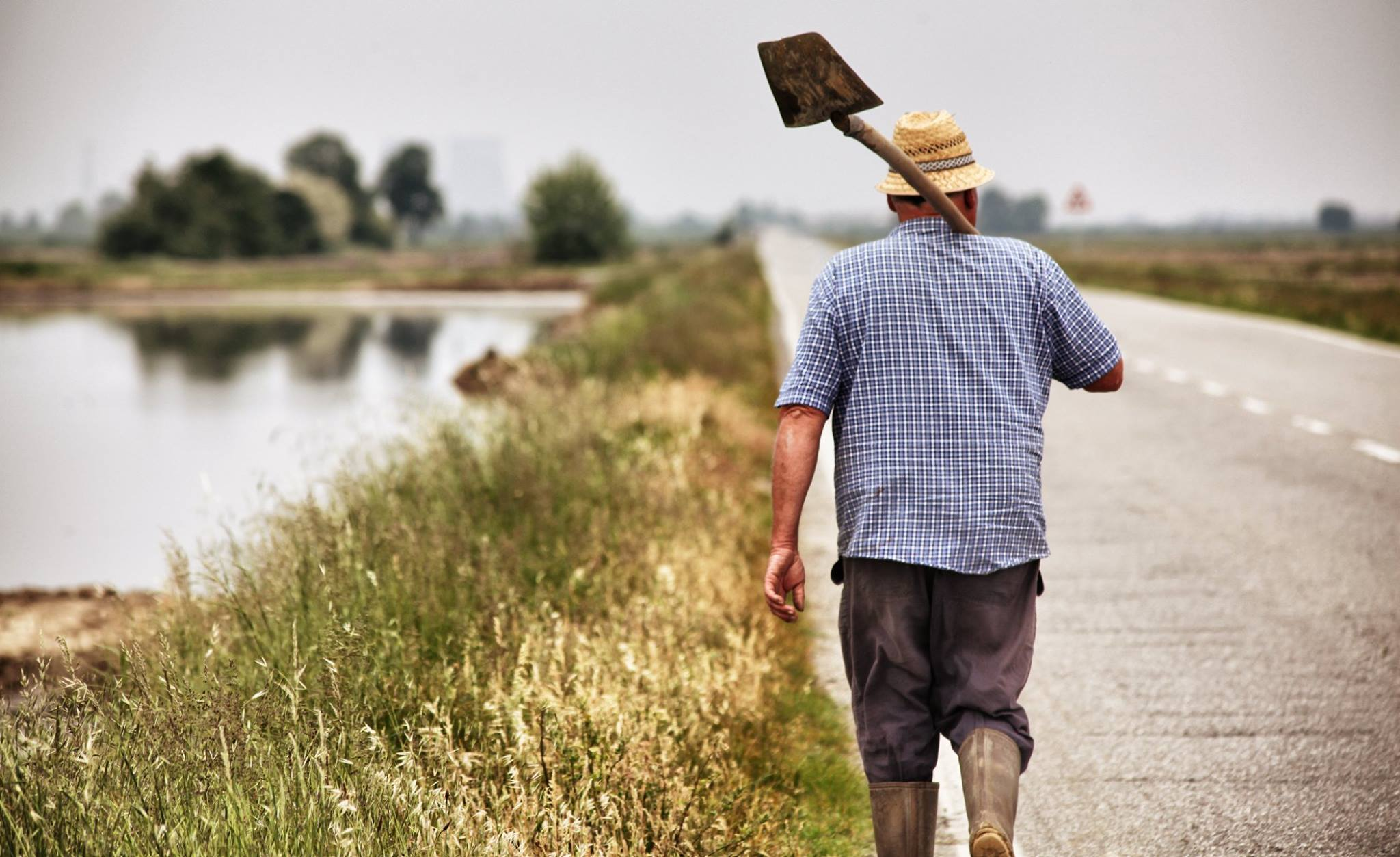 contadino-lavoro