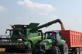 raccolto risone mietitrebbia Azienda Agricola Buffa Pierantonio 4