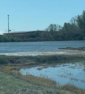 Alluvioni nelle risaie