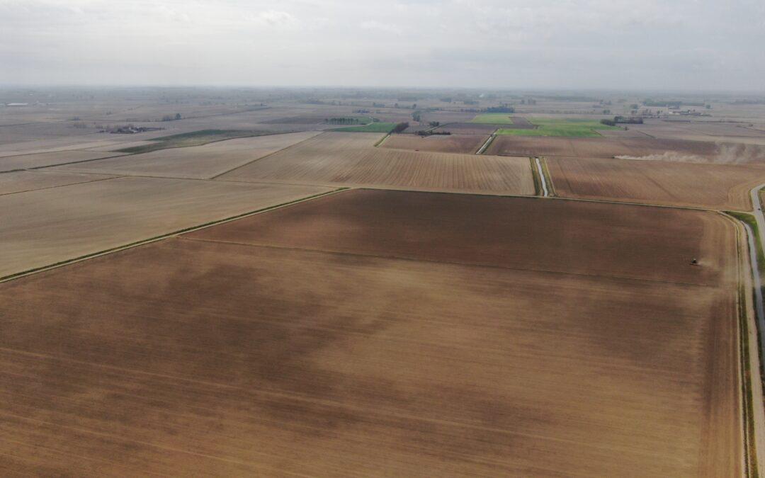 LA FORK DELL'AGRICOLTURA