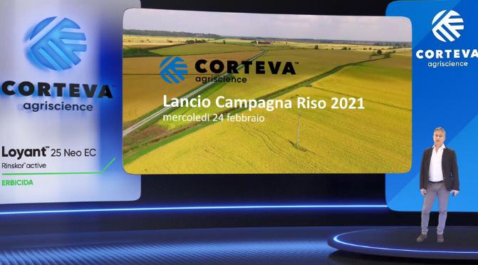 Corteva lancia la nuova campagna riso 2021