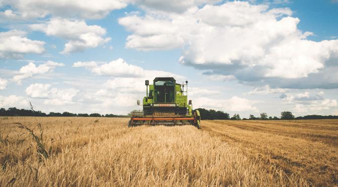 Titoli Pac per gli agricoltori